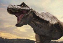 ফ্রান্সে পাওয়া গেল ১৪ কোটি বছর আগের ডাইনোসরের হাড়