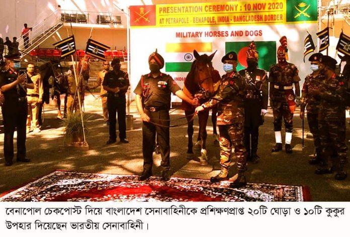 বাংলাদেশ সেনাবাহিনীকে ২০টি ঘোড়া ও ১০টি কুকুর উপহার দিয়েছেন ভারতীয় সেনাবাহিনী